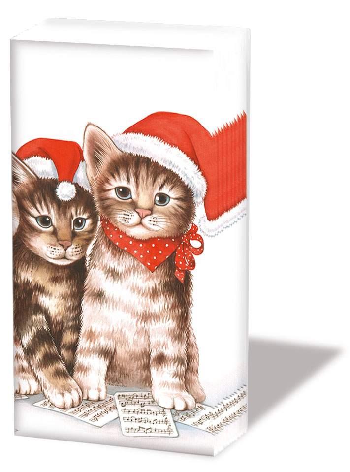 Servetele Batistute Cats 10 Buc
