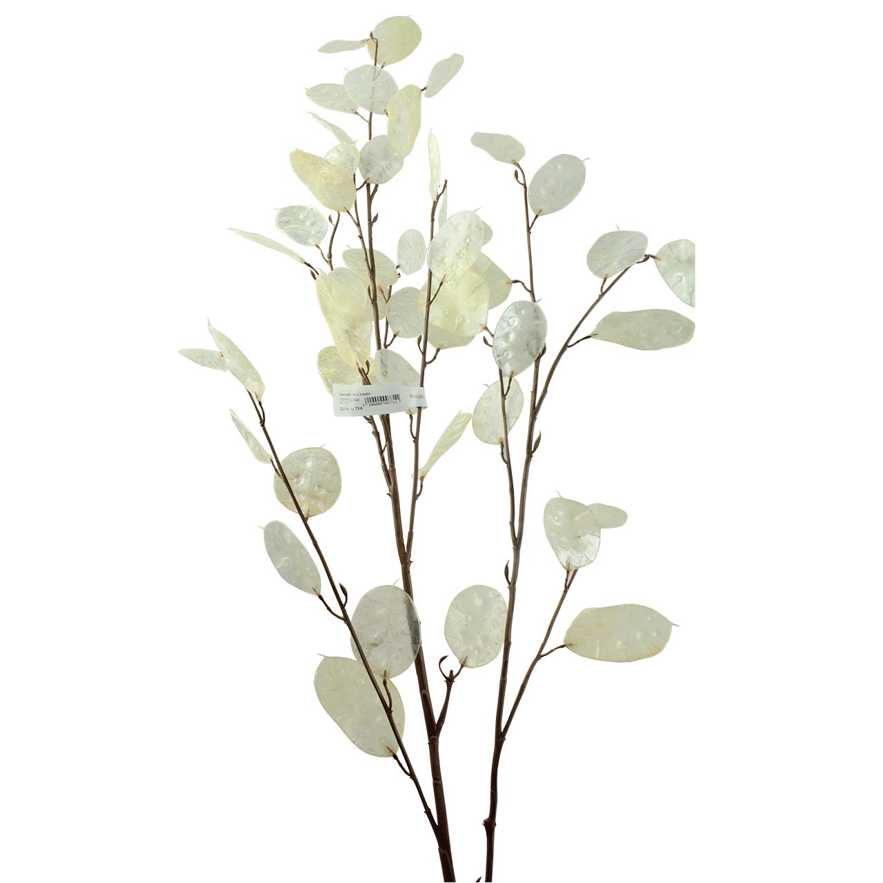 Floare Artificiala Silver Dollar 152 Cm
