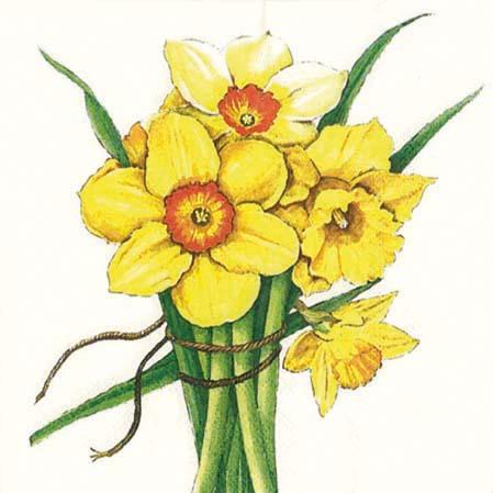 Servetele Decorative Din Hartie Cu Narcise