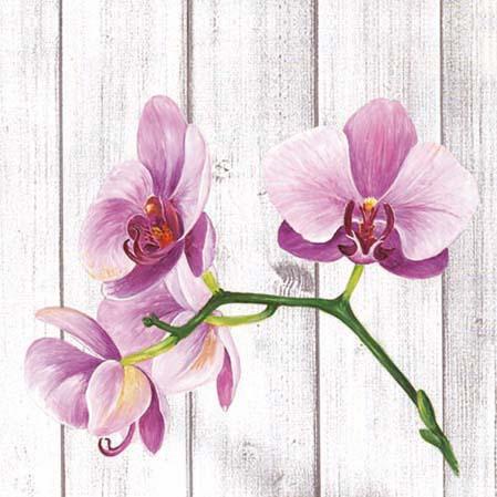 Servetele Decorative Din Hartie Cu Orhidee