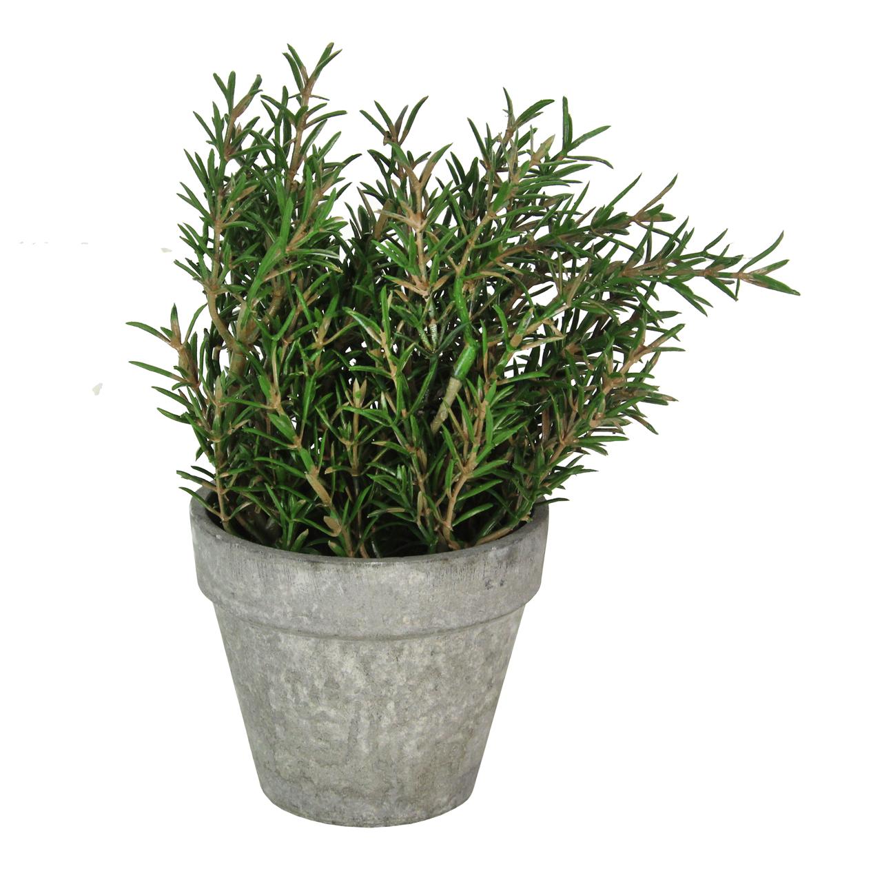 Floare Artificiala Rozmarin In Ghiveci 18 Cm