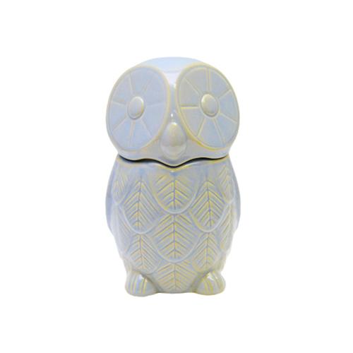 Recipient Owly Albastru