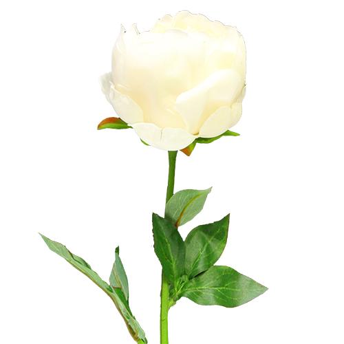 Floare Bujor Crem 51 Cm