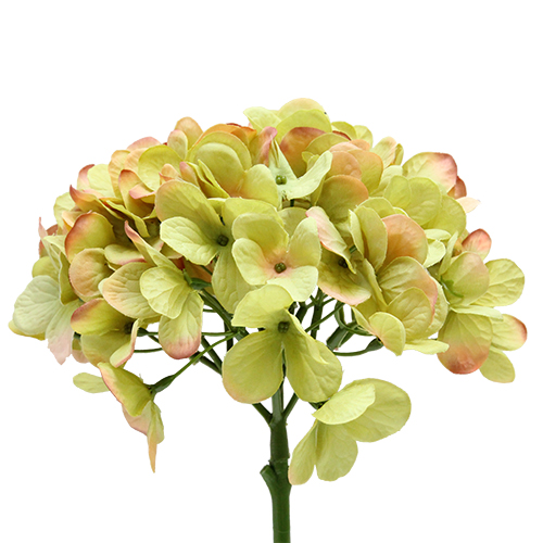 Floare Hortensie Verde 47 Cm