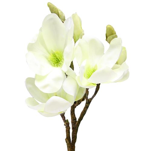 Floare Magnolia Alba 50 Cm