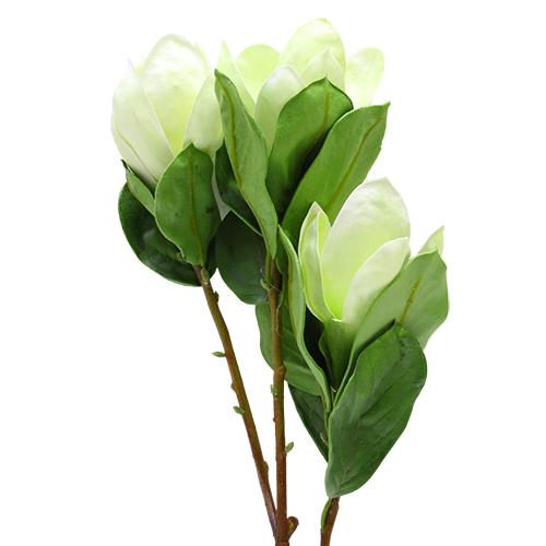 Floare Magnolie Alba 80 Cm