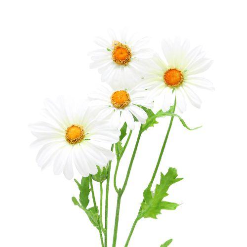 Floare Margareta Alba 60 Cm