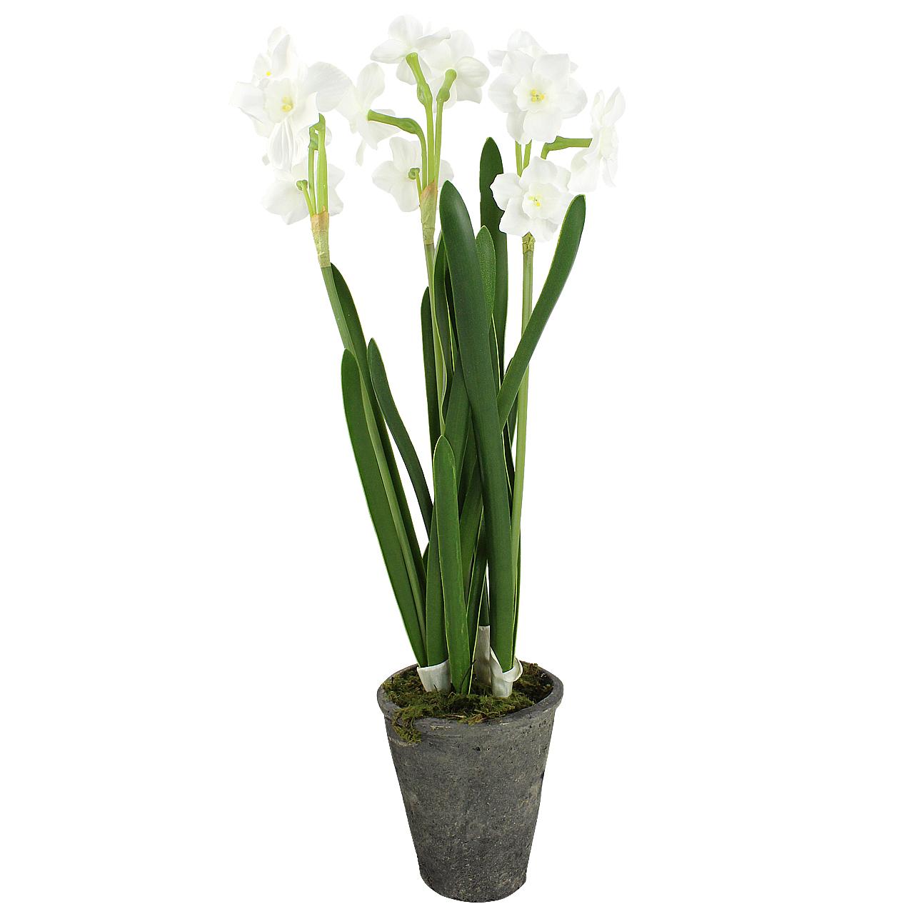 Floare decorativa Narcisa in ghiveci 48 cm( 391668)