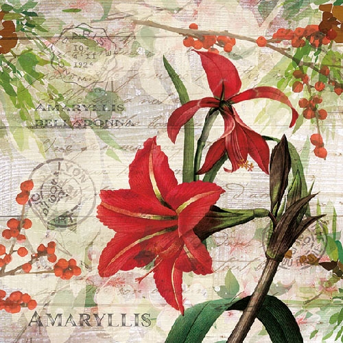 Servetele Amaryllis 33 cm