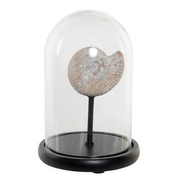 Decoratiune Fosil din sticla si lemn 26.5 cm