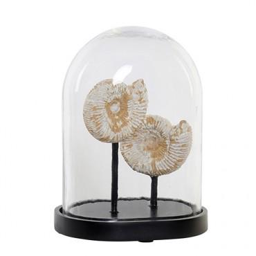 Decoratiune Fossil din sticla si rasina 28 cm