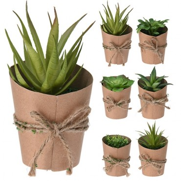 Floare decorativa Succulent 10 cm - modele diverse