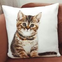 Perna cu ilustratie Pisica 45x45 cm