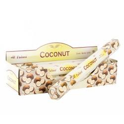 Betigase parfumate Coconut 25 cm