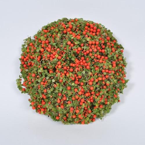 Deco Berries 22 cm chicville 2021