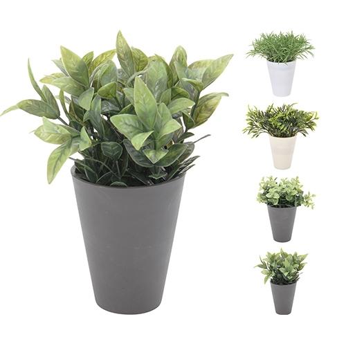 Floare decorativa in ghiveci 16x18 cm - modele diverse chicville 2021