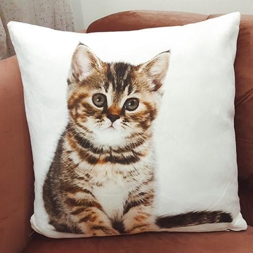 Perna cu ilustratie Pisica 45x45 cm chicville 2021