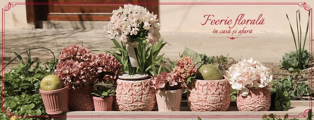 feerie florala